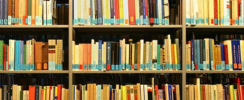 Many multicolored books on shelves